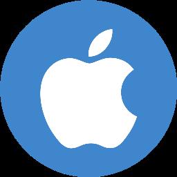 2. iOS